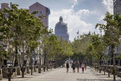 Cuban landscapes, havana, trinidad, cienfuegos, viñales, cojimar, vedado, plaza revolucion (24)